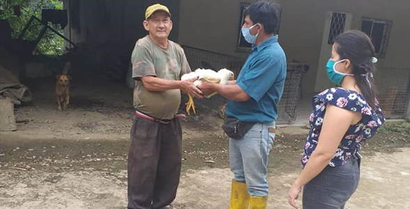 ENTREGA DE AVICOLAS POR FAMILIA EN TODA LA PARROQUIA.